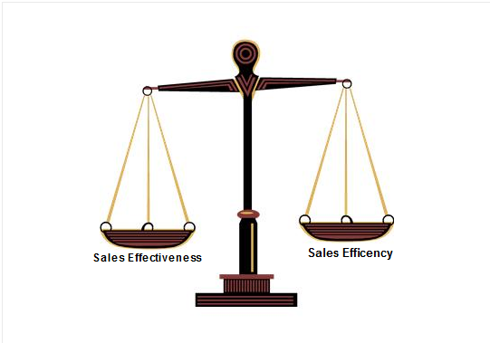 Which is more Important, Sales Effectiveness or Sales Efficiency?